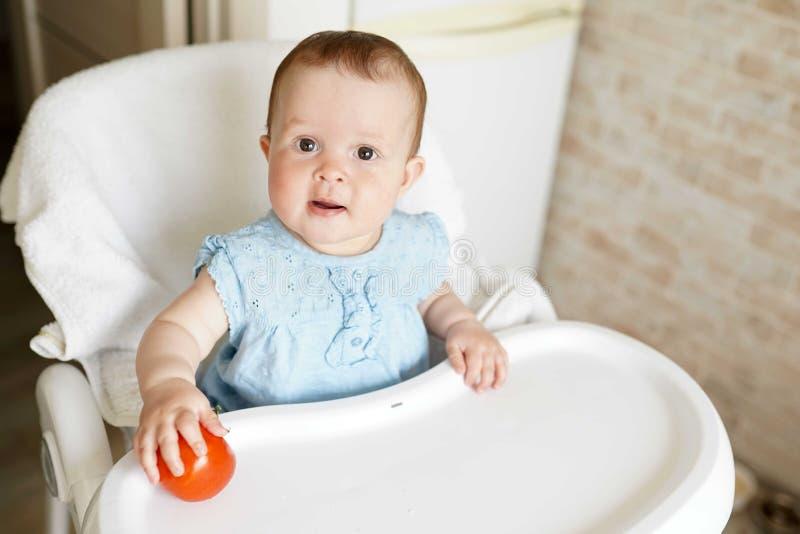 Dziecka łasowania warzywa czerwony pomidor w małej dziewczynki ręce w pogodnej kuchni Zdrowy odżywianie dla dzieciaków Przekąska  obrazy royalty free