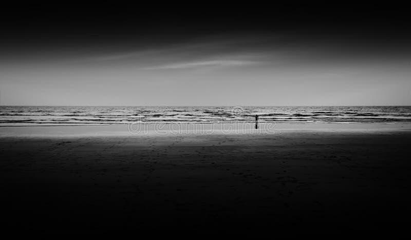Dziecka dopatrywania zmierzch na plażowym oceanie obraz royalty free