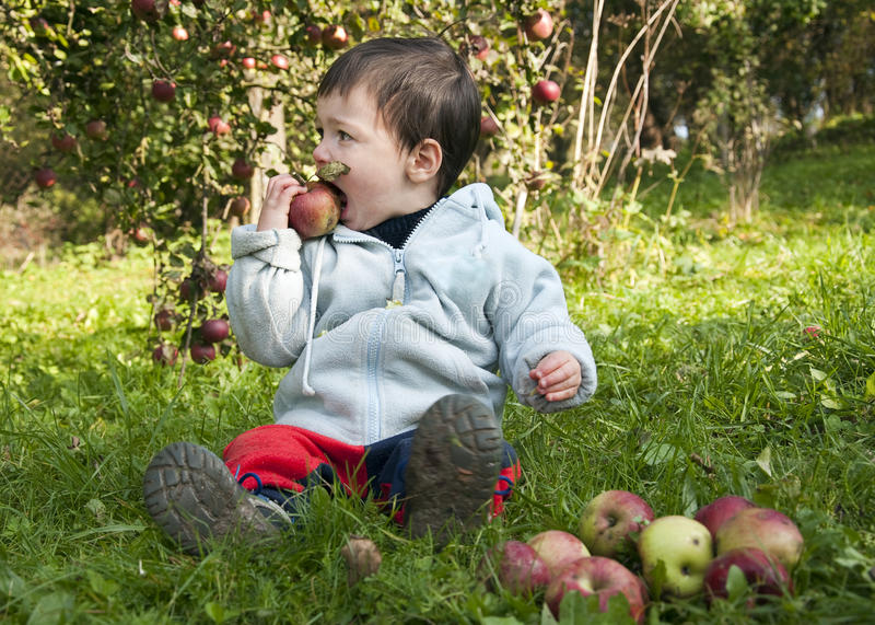 dziecka jabłczany łasowanie fotografia stock