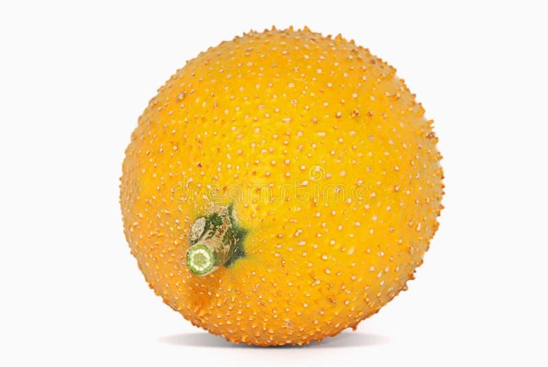 Dziecka jackfruit odizolowywający na bielu obrazy royalty free