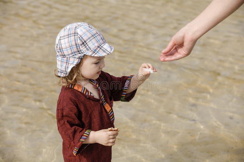 Dziecka kolekcjonowania skorupy na tropikalnej plaży zdjęcie royalty free