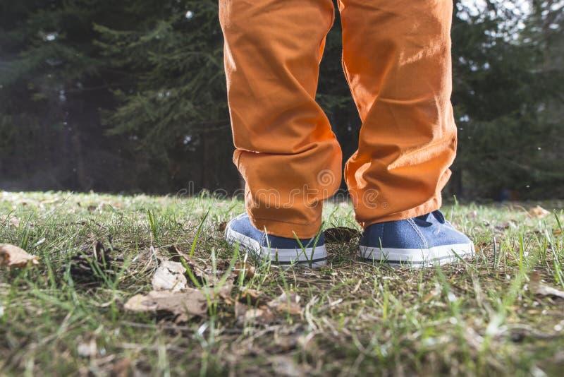 Download Dziecka lasu odprowadzenie zdjęcie stock. Obraz złożonej z rodzina - 53777434