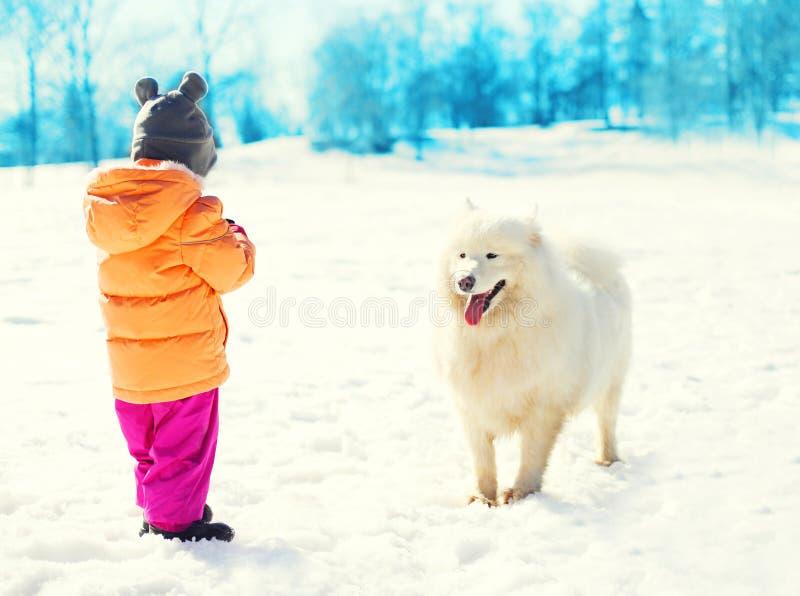 Dziecka odprowadzenie z białym Samoyed psem wpólnie w zimie obraz stock