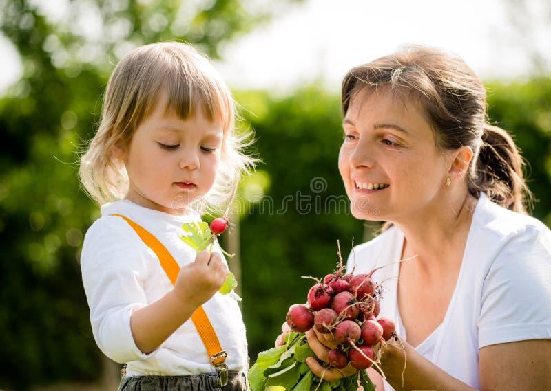 dziecka ogrodnictwa matka fotografia royalty free