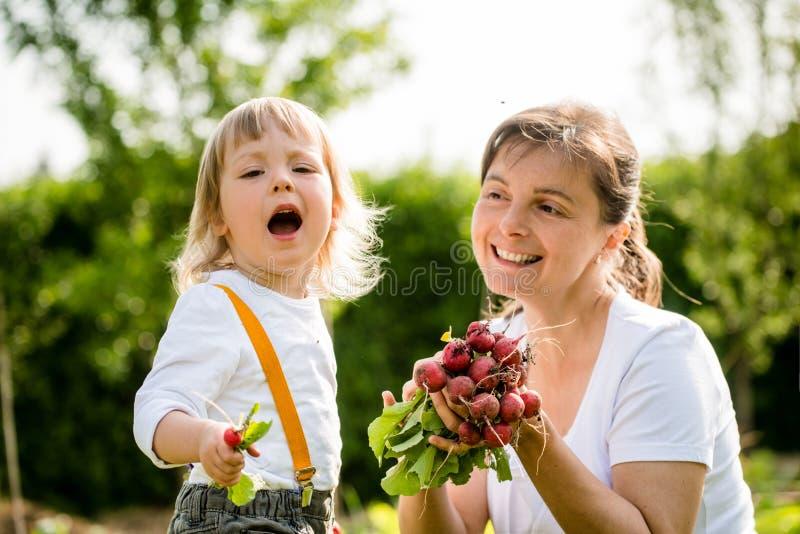 dziecka ogrodnictwa matka zdjęcia stock