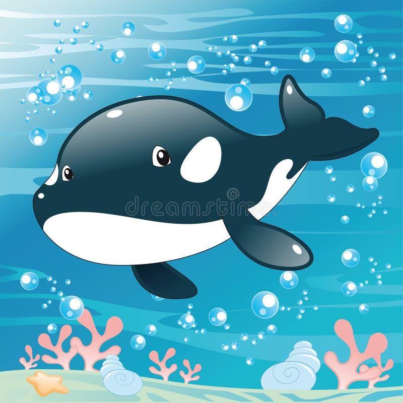 dziecka zabójcy wieloryb royalty ilustracja