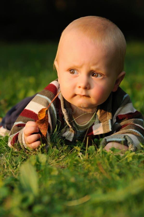 Dziecko bawić się z jesień liść zdjęcie royalty free