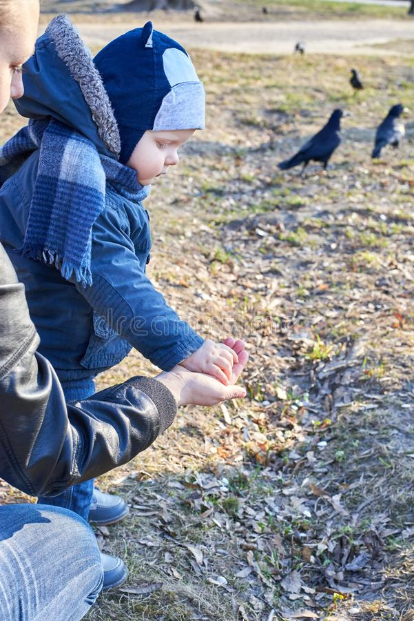 Dziecko bierze dyniowych ziarna od jej matki ręki karmić ptaki w parku w wczesnej wiośnie fotografia stock