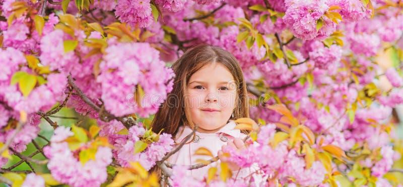 Dziecko cieszy si? ?ycie bez alergii Obw?chiwa? kwiaty Dostaje pozbywaj?cy si? sezonowa alergia Dziewczyna cieszy si? kwiecistego zdjęcia stock