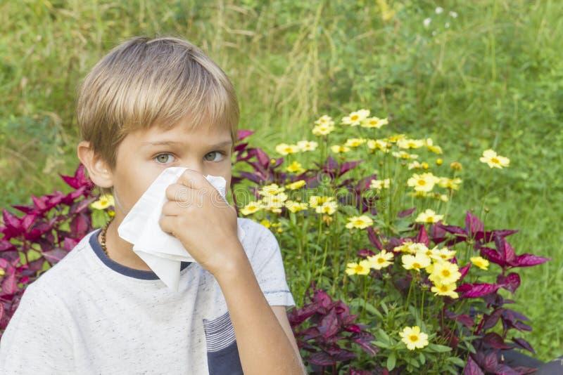 Dziecko dmucha jego nos Kwiaty i zielona łąka za on Opieka zdrowotna, medycyna, alergii pojęcie fotografia stock