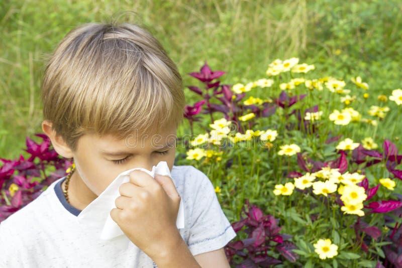 Dziecko dmucha jego nos Kwiaty i zielona łąka za on Opieka zdrowotna, medycyna, alergii pojęcie obraz stock