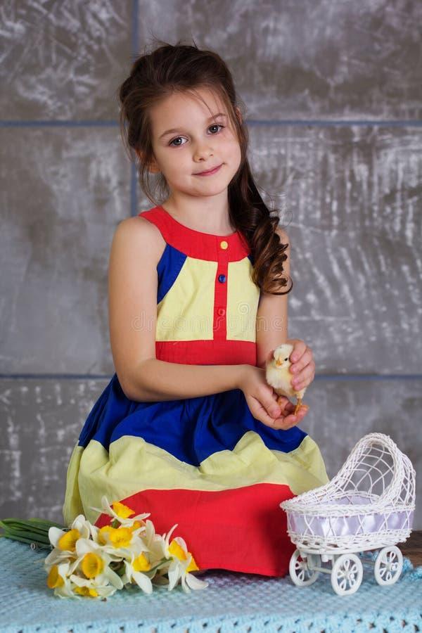 Dziecko dziewczyna bawić się z pisklęcym obsiadaniem w powoziku zdjęcia stock