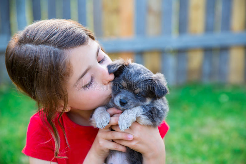 Dziecko dziewczyna całuje jej szczeniaka chihuahua doggy obrazy royalty free