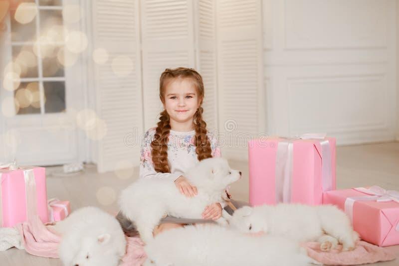 Dziecko dziewczyna trzyma szczeniaka na ona ręki blisko różowią prezentów pudełka zdjęcie royalty free