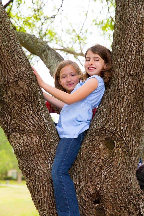 Dziecko dziewczyny bawić się wspinać się drzewo park zdjęcie royalty free