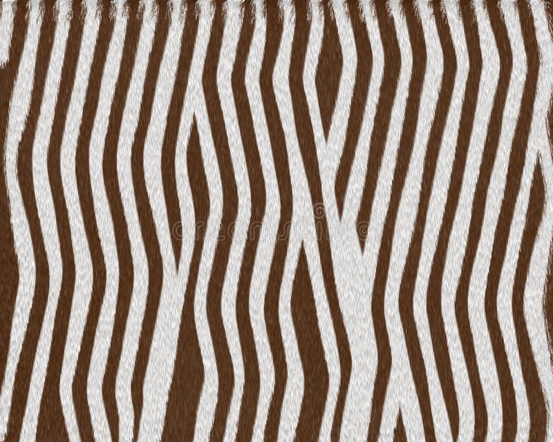 dziecko futra zebra skrót royalty ilustracja