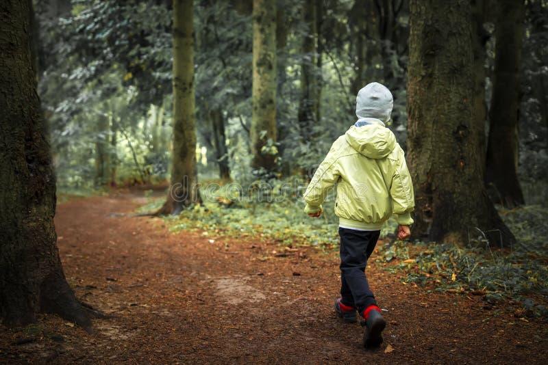 Dziecko gubjący w lasowej chłopiec chodzi w zielony lasowy Wycieczkować Dzieci w plenerowym w lesie Osamotniona chłopiec w lesie zdjęcia stock