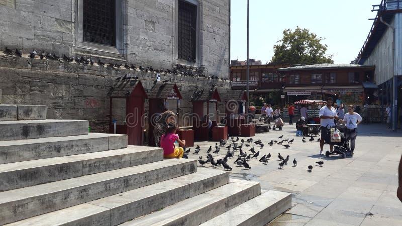 Dziecko i gołębie w Eminonu kwadratowym pobliskim Nowym meczecie w Istanbuł obraz stock