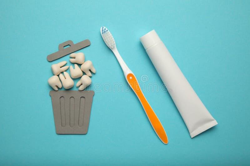 Dziecko i mądrość zęby w pojemniku na śmiecie Usunięcie zęby w dzieciach i dorosłych, pojęcie obrazy stock