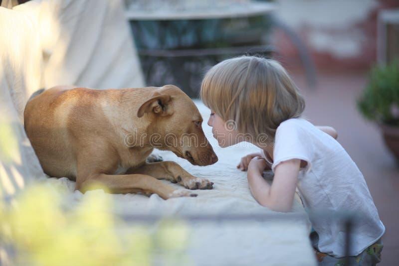 Dziecko i pies jesteśmy przyjaciółmi zdjęcie stock