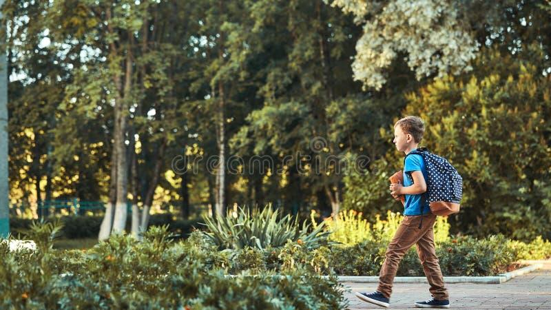 Dziecko i?? szko?a chłopiec uczeń iść szkoła w ranku szczęśliwy dziecko z teczką wewnątrz na jego plecy i podręczniki zdjęcia royalty free