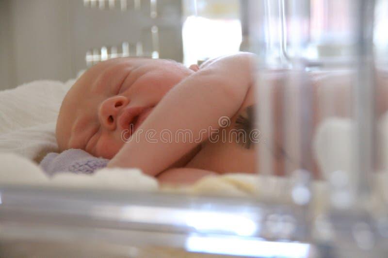 dziecko inkubator obraz royalty free