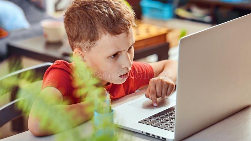 Dziecko jest przyglądający dla informacji o internecie przez laptopu samopoznanie w domu, robić pracie domowej Uważnie czytać zdjęcie stock