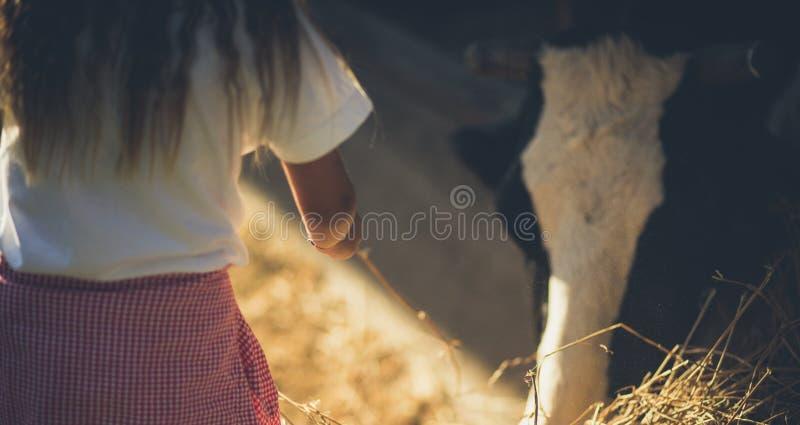 Dziecko który kocha zwierzęta obrazy stock