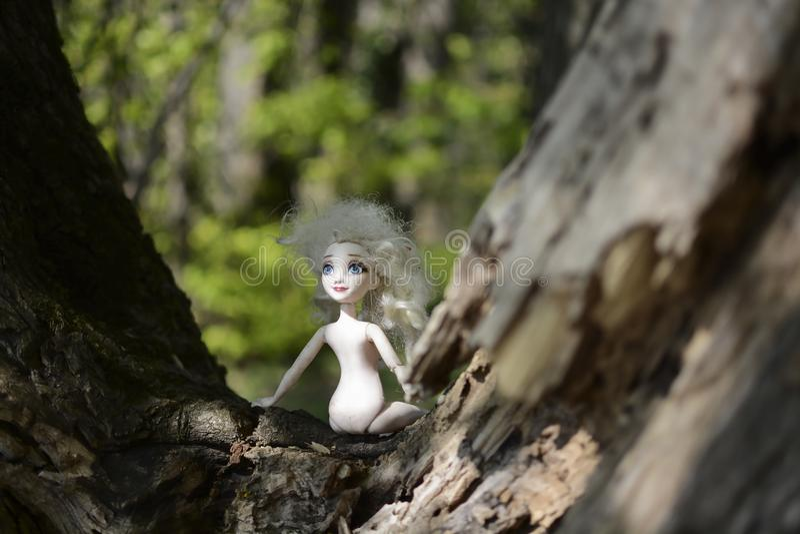 Dziecko lala z białym włosy, niebieskie oczy i żadny odziewa z lewej strony na drzewie w zielonym lesie zdjęcie royalty free