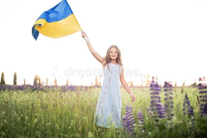 Dziecko niesie trzepotać błękitną i żółtą flaga Ukraina w lupine polu Ukraine& x27; s dzień niepodległości tła pięknych uroczysty zdjęcie stock
