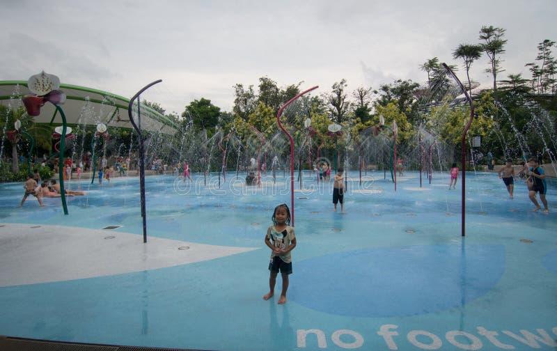 Dziecko pływacki basen w Singapur zdjęcie royalty free