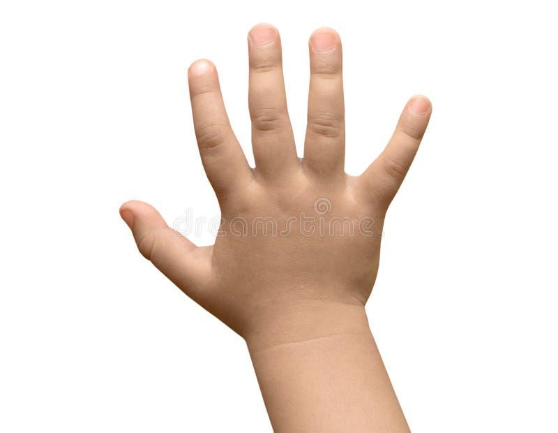 dziecko ręka zdjęcie royalty free