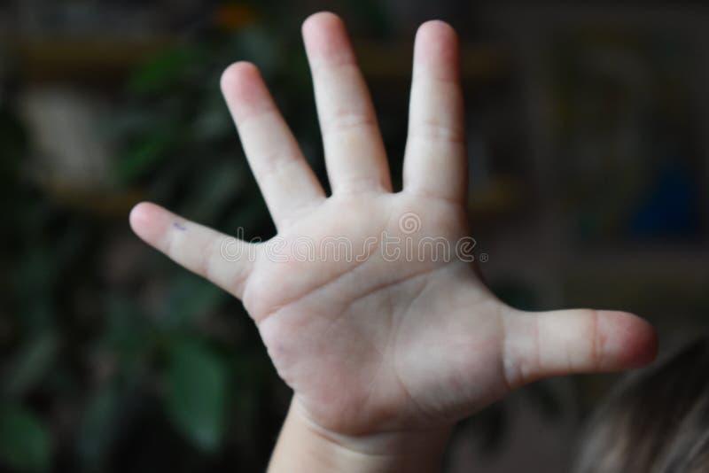 dziecko ręka pokazuje pięć palców fotografia royalty free