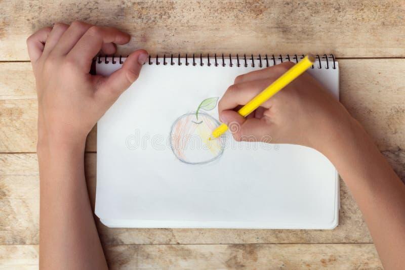 Dziecko ręki rysują jabłka z barwionymi ołówkami Odgórny widok obraz royalty free
