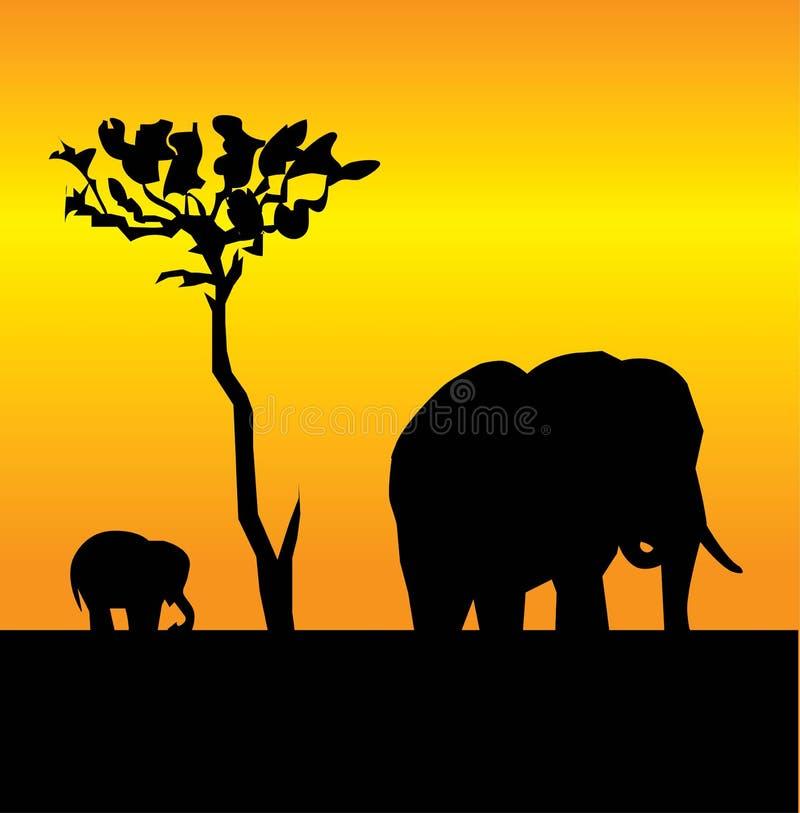 dziecko słoń
