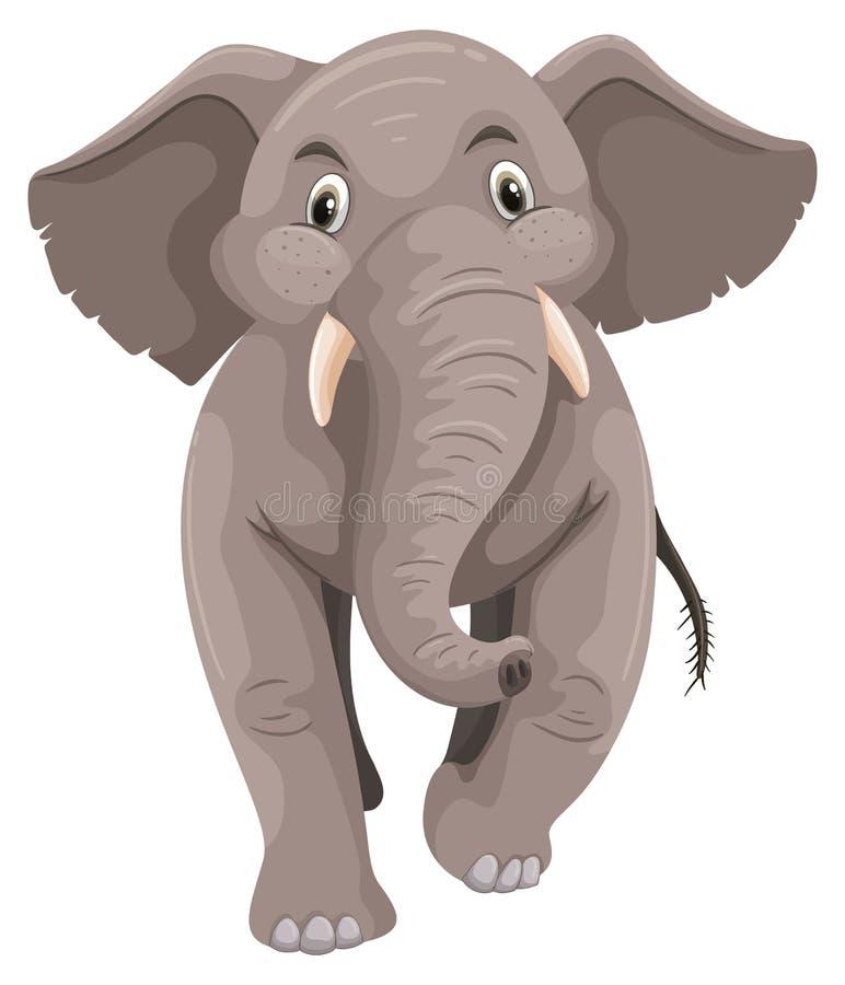 Dziecko słoń z szarą skórą ilustracja wektor