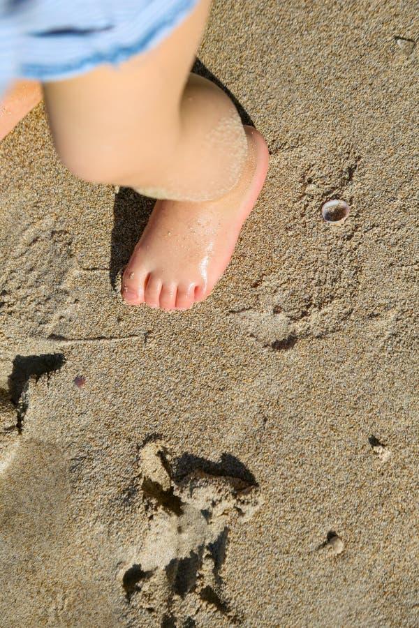 Dziecko stopy piasek obrazy royalty free
