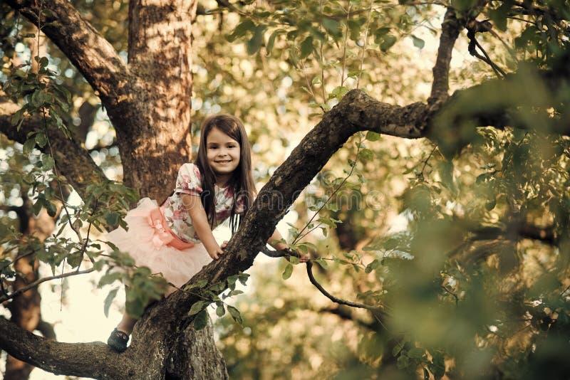 Dziecko uśmiech na gałąź, dzieciństwo obraz stock