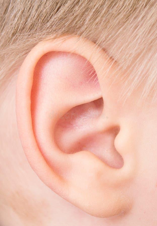 Dziecko ucho zdjęcia stock