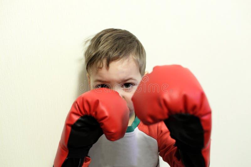 Dziecko w bokserskich rękawiczkach zdjęcia royalty free
