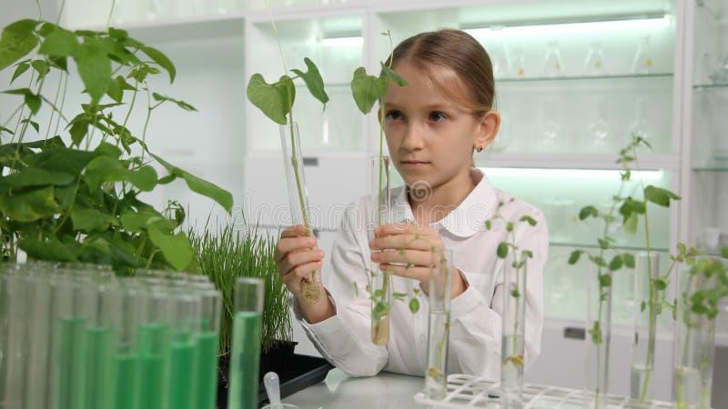 Dziecko w chemii Lab, Szkolnego dzieciak nauki eksperymentu Edukacyjny zajęcia z biologii zdjęcie stock
