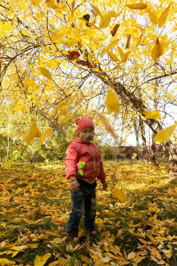 Dziecko w parku na tle jesieni ulistnienie obraz royalty free