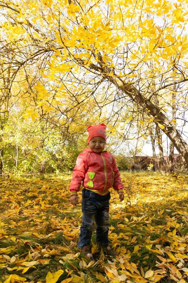 Dziecko w parku na tle jesieni ulistnienie obrazy royalty free