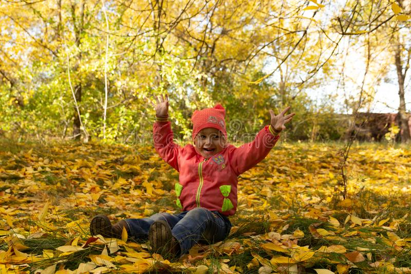 Dziecko w parku na tle jesieni ulistnienie fotografia stock