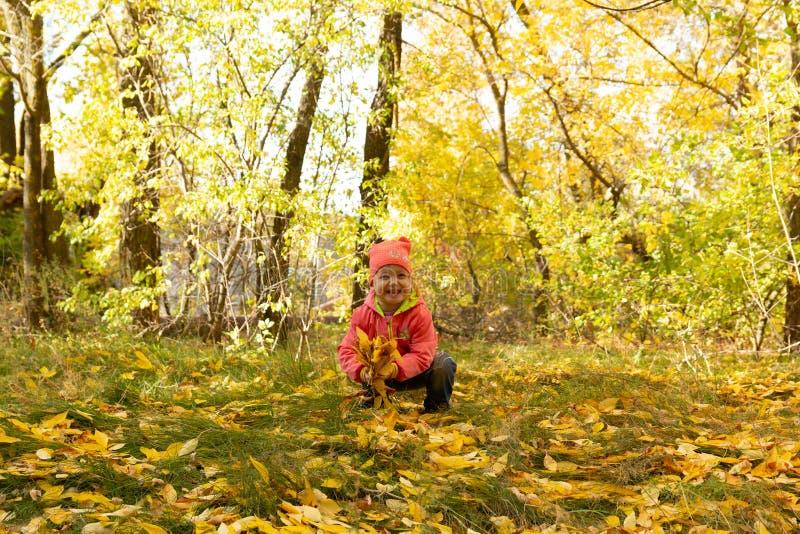 Dziecko w parku na tle jesieni ulistnienie obrazy stock