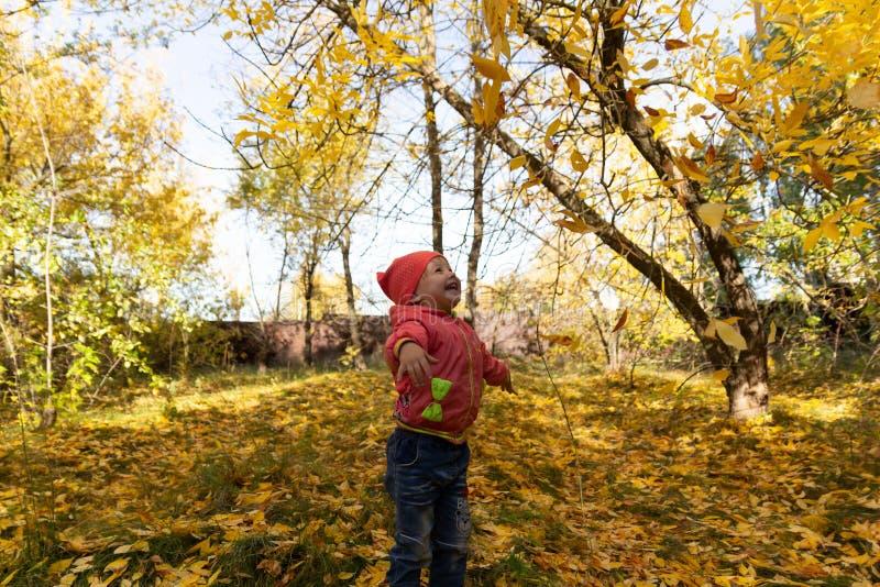 Dziecko w parku na tle jesieni ulistnienie zdjęcia royalty free