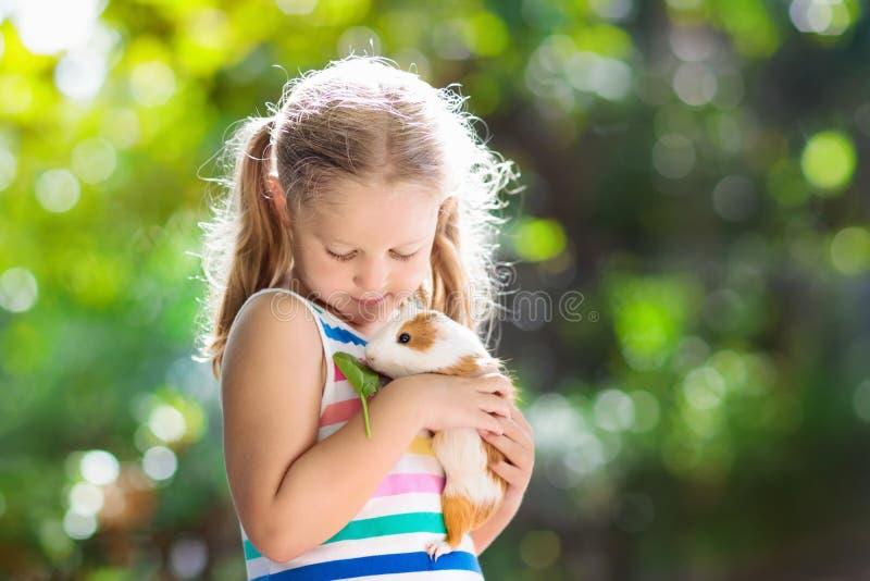 Dziecko z królikiem doświadczalnym Cavy zwierzę Dzieciaki i zwierzęta domowe obrazy royalty free
