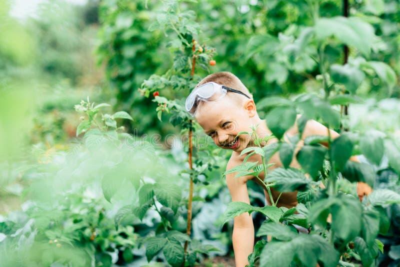 Dziecko z niebieskimi oczami bawić się w wiosce w lecie fotografia stock
