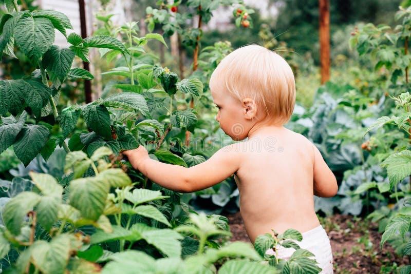 Dziecko z niebieskimi oczami bawić się w wiosce w lecie obrazy stock