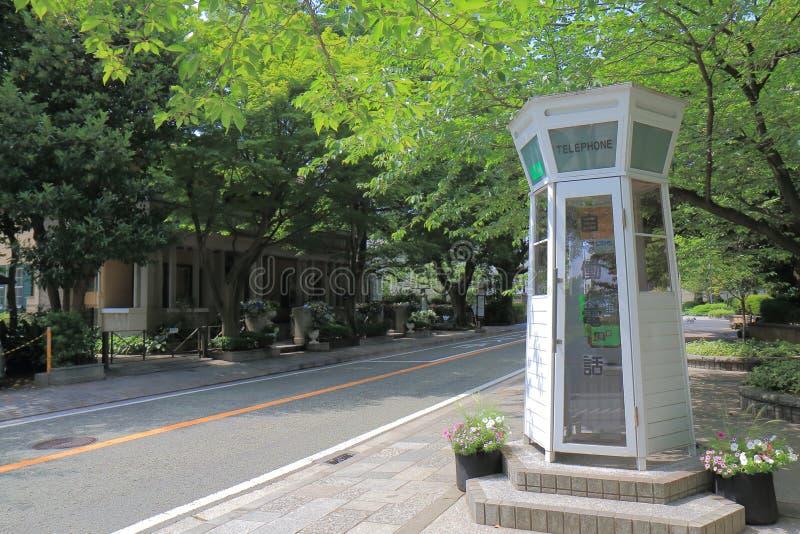 Dziejowa architektura Yamate Yokohama Japonia obraz royalty free